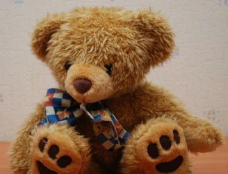 College aims to make hospital bearable for teddies
