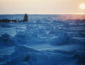 Crossing the Arctic Ocean by foot and other books