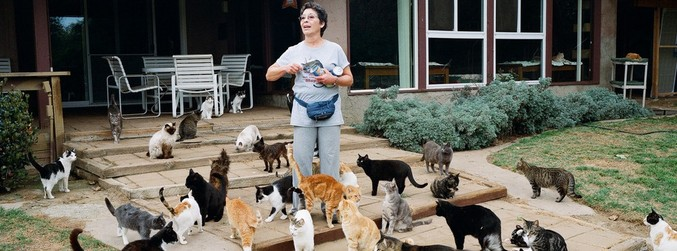 Lynea Lattanzio, Cats, Cat Lady, California