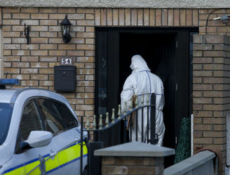 Gardaí recover equipment that may have been used to dismember murder victim