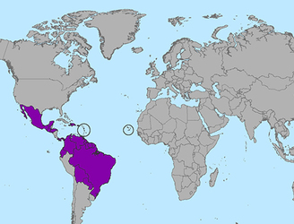 Department of Foreign Affairs issues travel advice over Zika outbreak