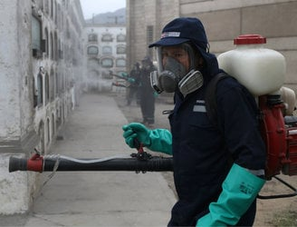 WHO calls for greater co-ordination between agencies trying to combat spread of Zika virus