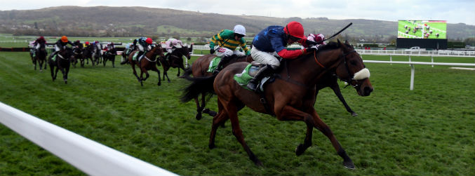Old Guard withdrawn from Tuesday's Champion Hurdle