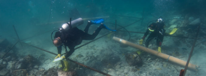 Archaeologists discover rare artefacts at site of 1503 shipwreck