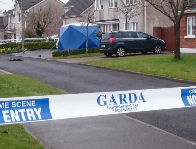 gardai, appeal, witnesses, meath, noel, duggan, shooting