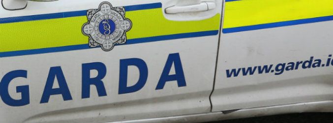 gardai, witnesses, robbery, assault, motorway, m7