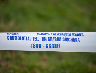 Investigation after human skull found in garden of south Dublin home
