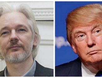 Julian Assange on getting Donald Trump's tax returns: 'We're working on it'