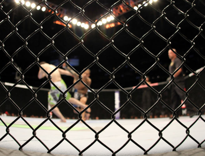 Ireland's MMA community demands more transparency from IMMAA