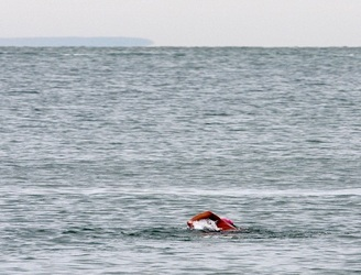 A British man has died while trying to swim from Britain to France
