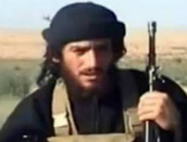 ISIL spokesman Adnani 'killed in Syria's Aleppo'