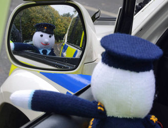 Gardaí looking for suggestions to name their newest recruit