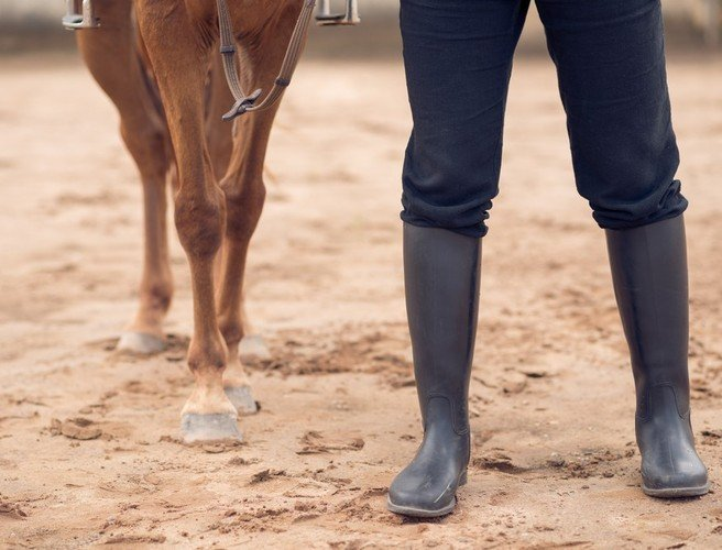 Living with mental illness: Trying out equine assisted therapy