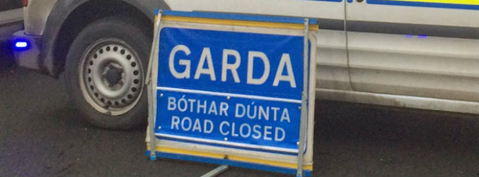 meath, cattle, collisions, m3, motorway