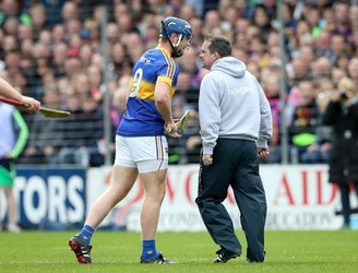 Wexford will not appeal Davy Fitzgerald's ban