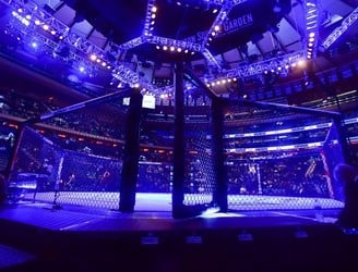 EXCLUSIVE: Sport Ireland facilitating talks with a view to recognise MMA