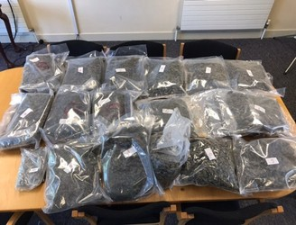 Gardaí seized drugs worth €470,000 in Dublin