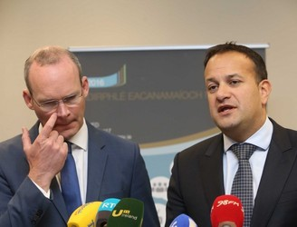 Coveney wins support of ordinary Fine Gael members