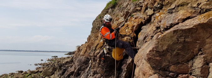 WATCH: The Coast Guard rescue dog trapped in cliff