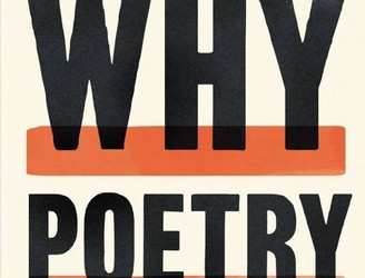 'Why Poetry' with Matthew Zapruder