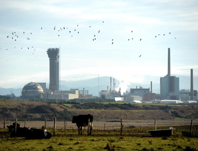 Sellafield facing prosecution after worker contaminated