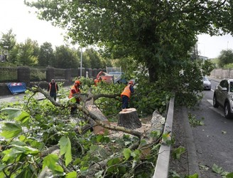 Around 39,000 customers still without power after Storm Ali