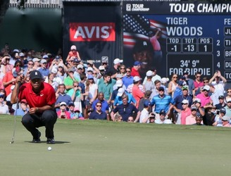 OPINION | Tiger is America personified - imperfect but indomitable