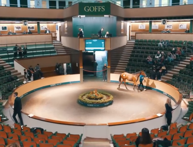 WATCH | The 3.2 million Euro horse | Goffs Orby sale