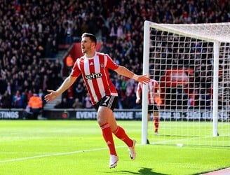 Shane Long apoligised to his manager for scoring only one goal against Villa